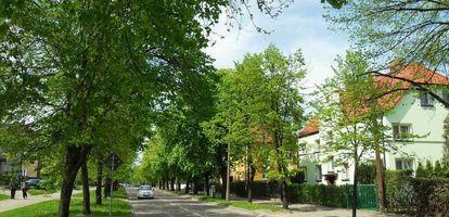 Jakie atrakcje zapewnia mieszkańcom jedna z najmniejszych gdańskich dzielnic - Strzyża? Sprawdź na GetHome.pl.